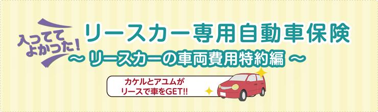 リースカー専用自動車保険 リースカーの車両費用特約編